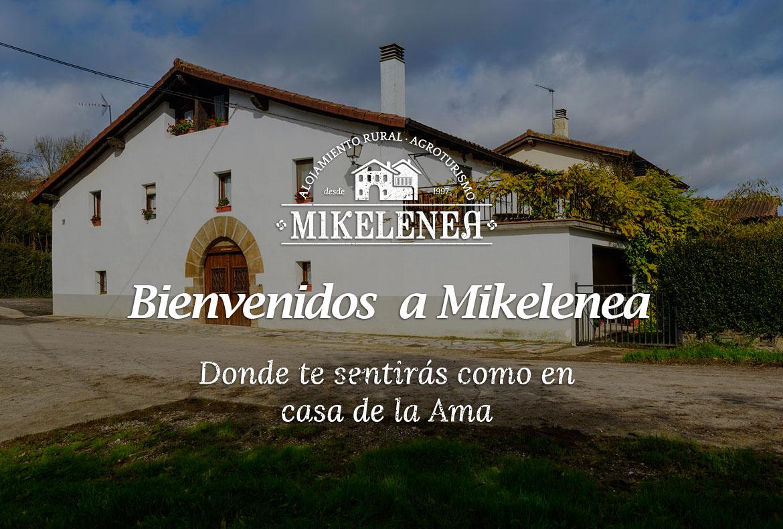Agroturismo y turismo rural en casa rural para grupos grandes en el norte de Navarra en el valle de larraun en arruitz