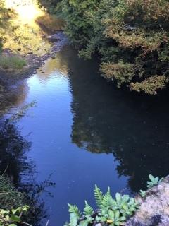 Paseo junto al rio Larraun desde la casa rural Mikelenea